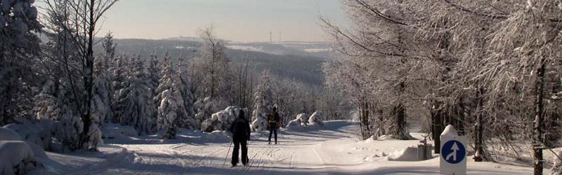 Skitour zum Wieselstein